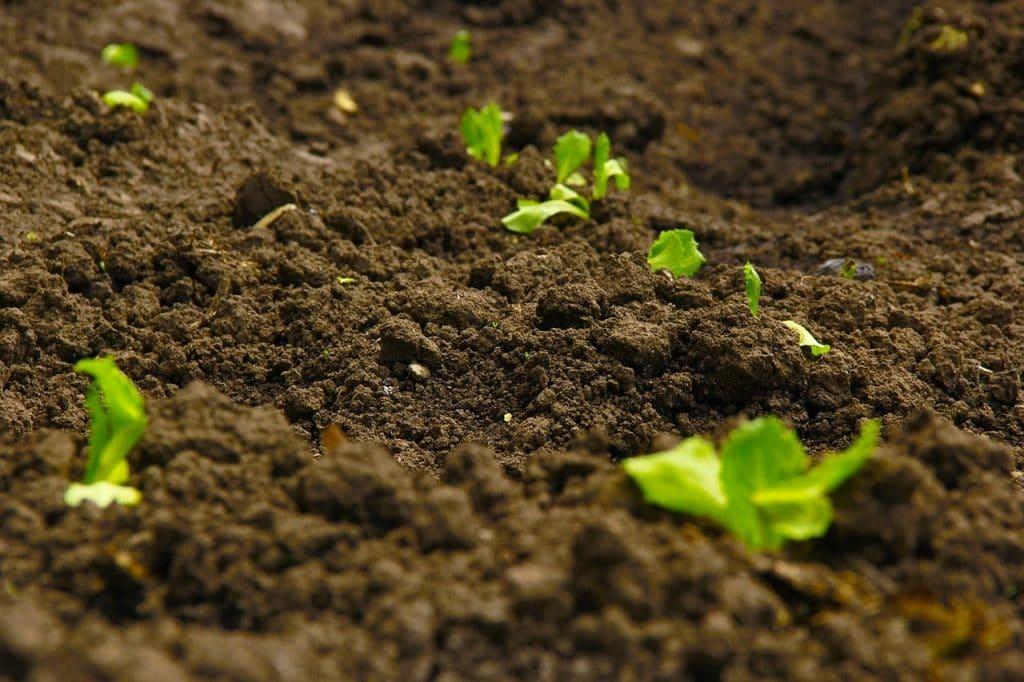 ما هي ميكانيكا التربة ؟
